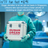 organ donations in singapore wtf fun facts
