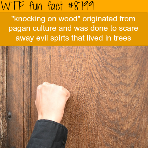 Origins of Knocking on Wood - WTF fun facts