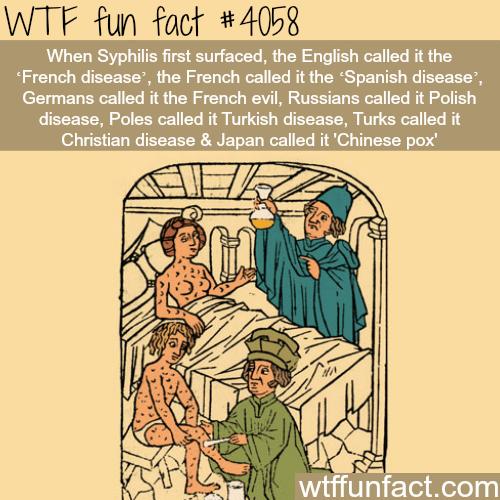Origins of Syphilis - WTF fun facts