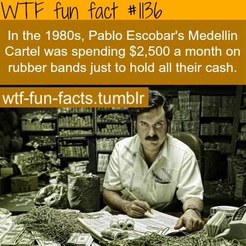 Pablo Excobar - people's fact