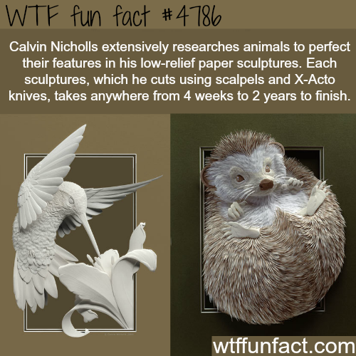 Paper art sculptures by Calvin Nicholls - WTF fun facts
