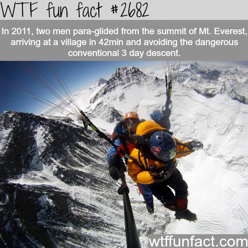 Para-gliding from Mt. Everest -WTF funfacts