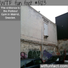 parkour gym in malmo sweden wtf fun facts