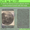 passport photos with your dog wtf fun facts