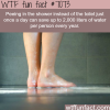 peeing in the shower wtf fun facts