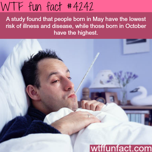 People born in October are more likely to get sick -  WTF fun facts