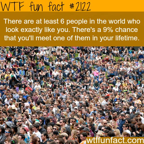 People that look like me -WTF fun facts