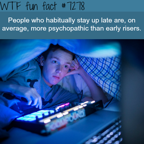 People who stay up late - WTF fun fact