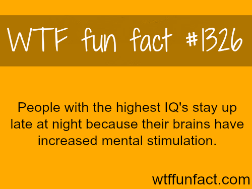 PEOPLE with the highest IQ's