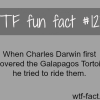 peoples fact charles darwin more of wtf facts