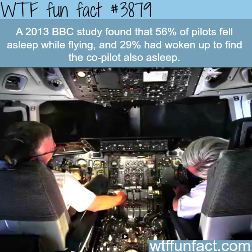 Percentage of pilots who fell asleep while flying - WTF fun facts