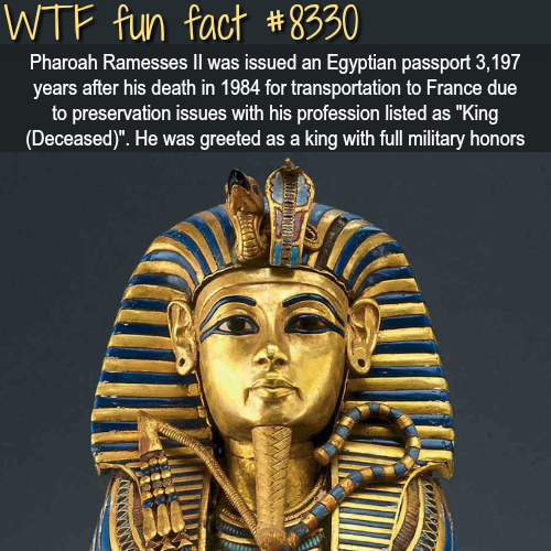 Pharaoh Rameses was issued an Egyptian passport - WTF fun facts