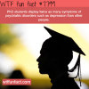 phd students wtf fun facts