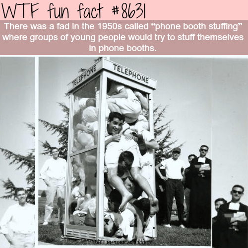 Phone booth stuffing - WTF fun facts