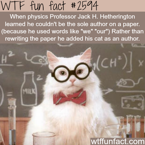 Physics Professor Jack H. Hetherington's cat -WTF funfacts