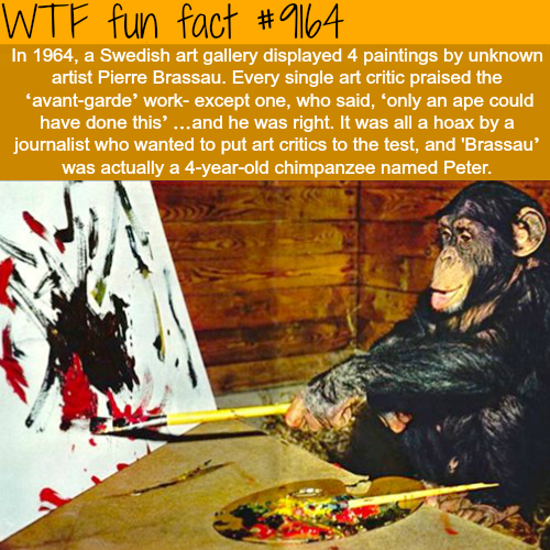 Pierre Brassau - WTF Fun Facts