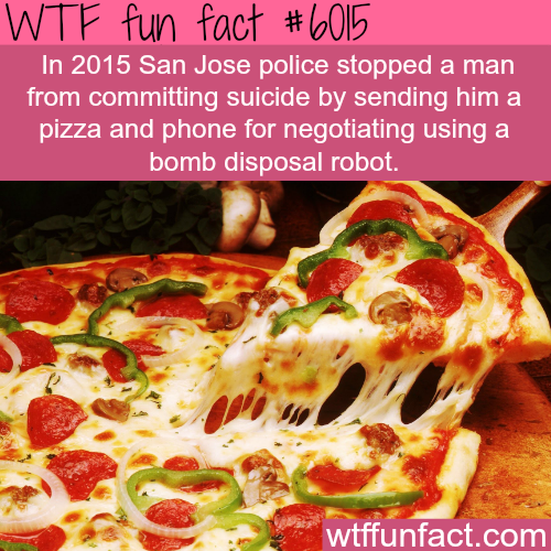 Pizza stops a man from committing suicide - WTF fun facts