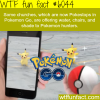 pokemon go facts wtf fun facts