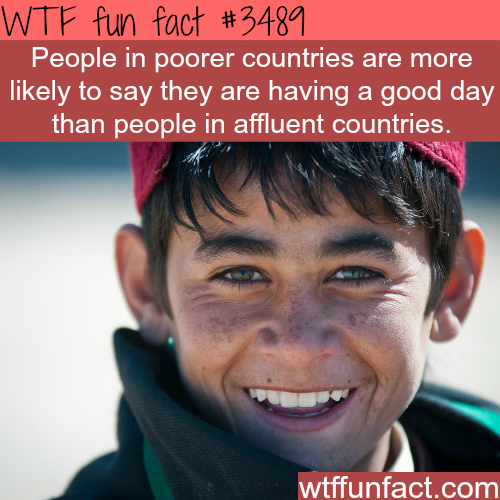 Poor people are happier? -  WTF fun facts