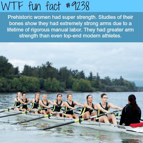 Prehistoric women - WTF fun fact