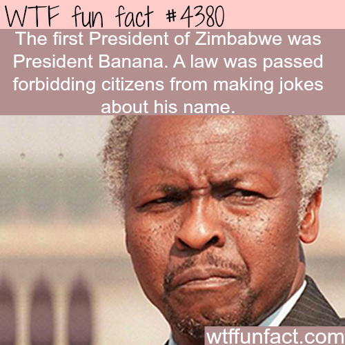 President Banana of Zimbabwe - WTF fun facts