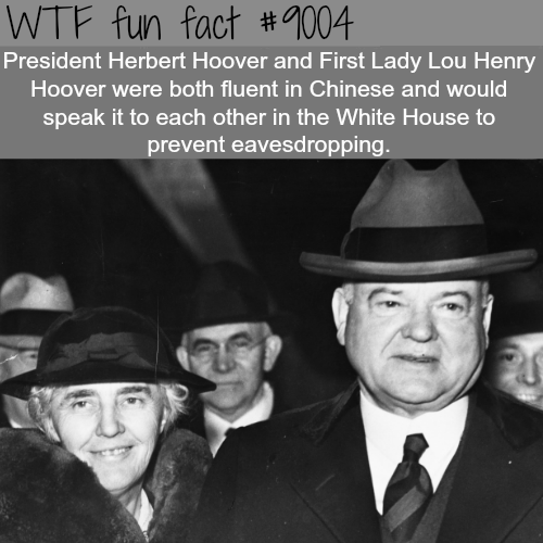 President Herbert Hoover - WTF fun facts