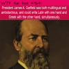 president james a garfield was both mulitlingual