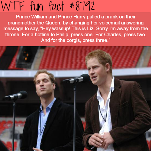 Prince William and Prince Harry Pulled a Prank on the Queen - WTF fun facts