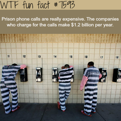 Prison phone calls - WTF fun fact