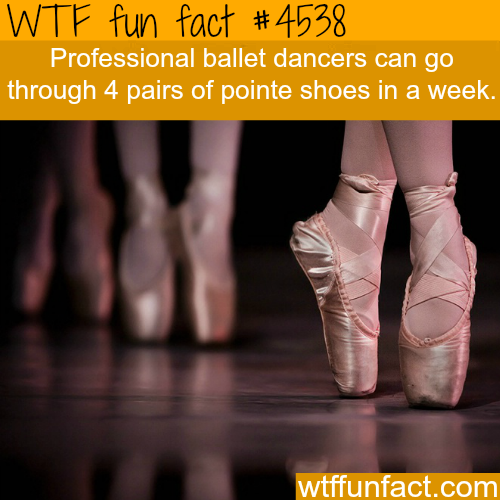 Professional ballet -   WTF fun facts