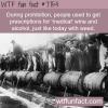 prohibition wtf fun fact