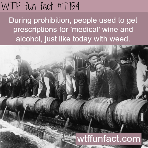 Prohibition - WTF fun fact