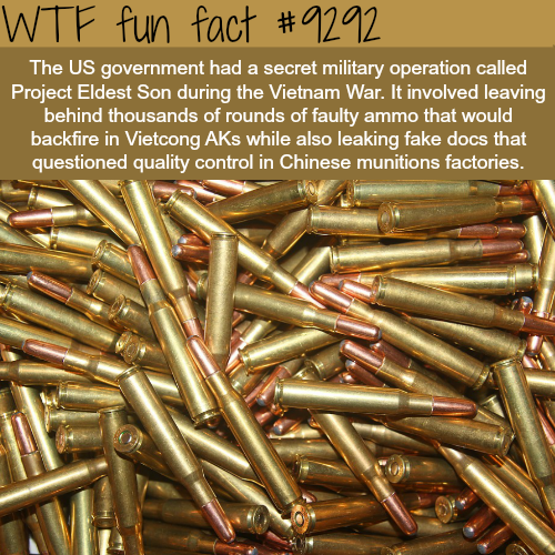 Project Eldest Son - WTF fun fact