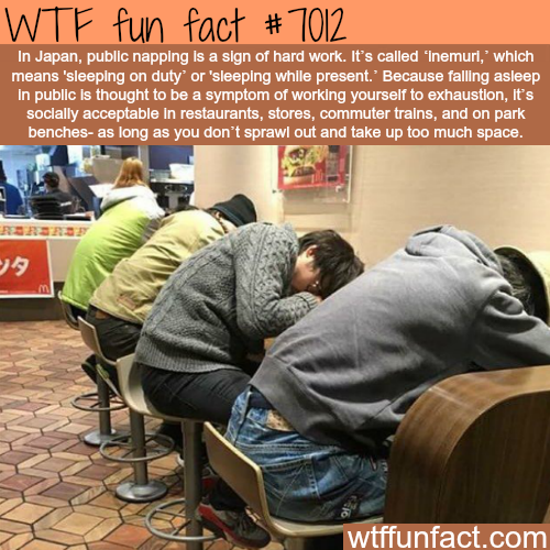 Public napping in Japan - WTF fun facts