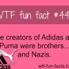 puma and adidas