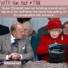 queen elizabeths handbag wtf fun facts