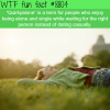 quirkyalone wtf fun facts