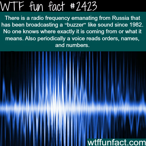 Radio Frequency from Russia -WTF funfacts