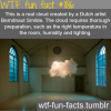 real cloud in a room by dutch artists