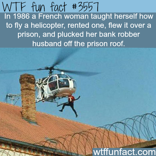 Real life prison escape using a helicopter - WTF fun facts