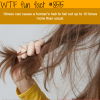 reasons why your hair is falling wtf fun facts