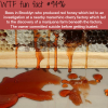 red honey wtf fun fact