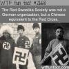 red red swastika societysociety