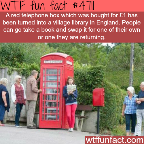 Red telephone box converted into a library - WTF fun facts