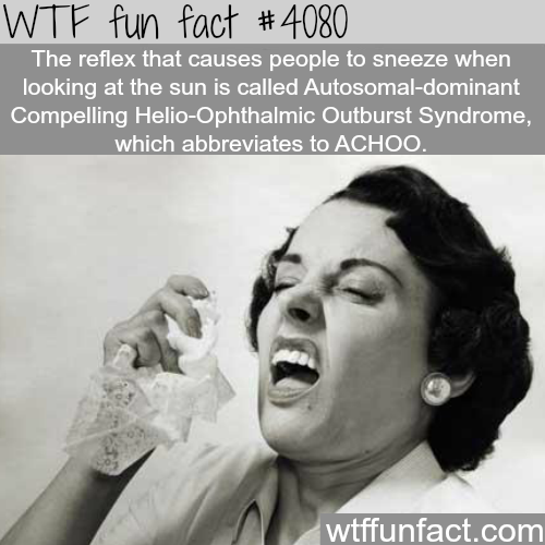 Reflex that causes people to sneeze when looking at the sun - WTF fun facts