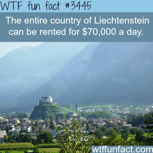 Rent the entire country of Liechtenstein - WTF fun facts
