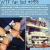rich kids of instagram wtf fun facts
