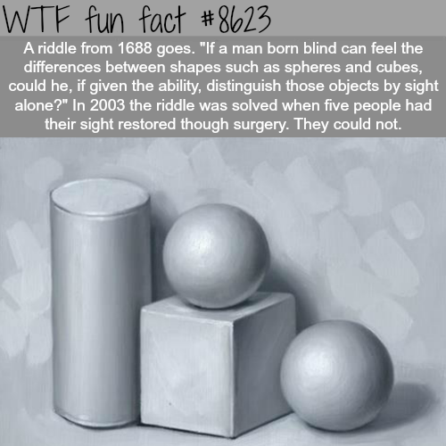 Riddle me this - WTF fun facts