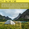 right to roam wtf fun facts