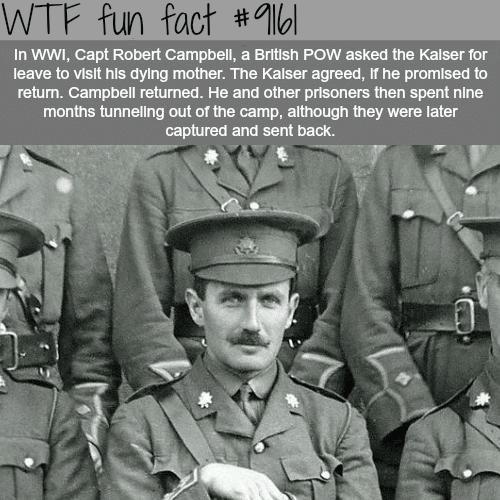 Robert Campbell - WTF Fun Facts